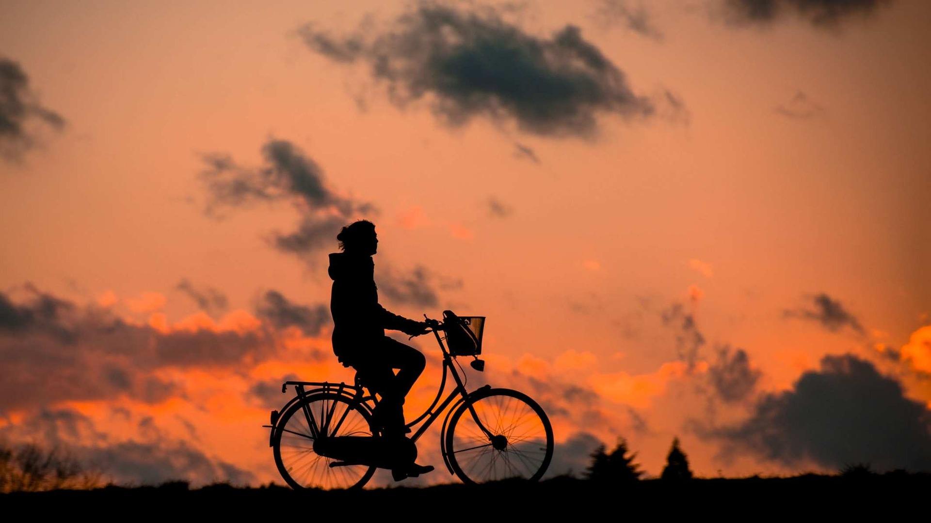 自転車・オートバイを守る運転を心がけましょう!